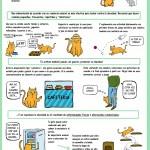 infografía editada por una compañera especialista en etología