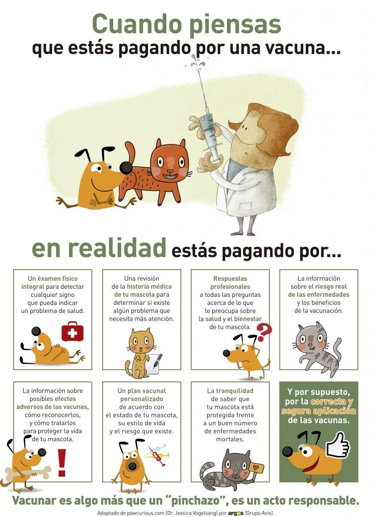 esto es una descrpcion de lo que hacemos los veterinarios  cunado vacunamos una mascota